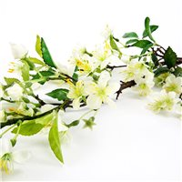 Vitale Pear Flower White